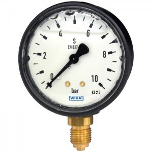 Type 113.13 - Bourdon tube pressure gauge  Liquid filling, plastic case